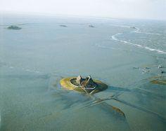 Hallig Hooge An Island