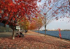 Ontario Waterfront | por fishwasher