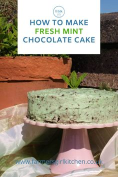 Bring the freshness of garden mint to your baking with this delicous Fresh Mint Chocoalte Cake. It's a rich chocolate cake filled and covered in chocolate mint buttercream, ehnanced with fresh mint leaves Mint Chocolate Chips, Chocolate Recipes, Cake Chocolate, Sweet Desserts, Sweet Recipes, Delicious Desserts, Cream Cheese Coffee Cake, Mint Cake, Birthday Desserts