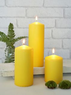 Summer Yellow Pillar Candles from Nordic House aesthetic yellow Summer Yellow Pillar Candles Expensive Candles, Yellow Candles, Candle Maker, Candlemaking, Pillar Candles, Scented Candles, Diy Candles, Beautiful Candles, Mellow Yellow