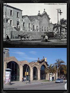 Drassanes / Atarazanas de Barcelona 1890-2009