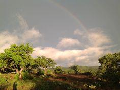 Double rainbow !!