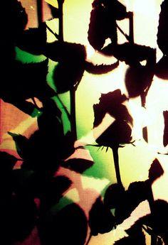 Silhouette, Art, Nature, Art Background, Kunst, Performing Arts, Art Education Resources, Artworks