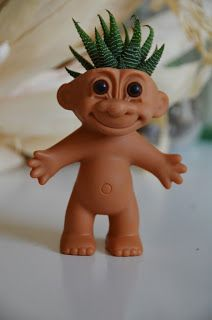 How to make a troll doll succulent garden... I need this on my desk at work <3