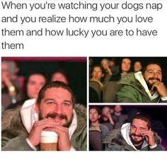 Cute Feel Good Wholesome Memes Dump - 9