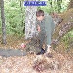 Cluj: Doi suspecţi de braconaj, reţinuţi de poliţişti