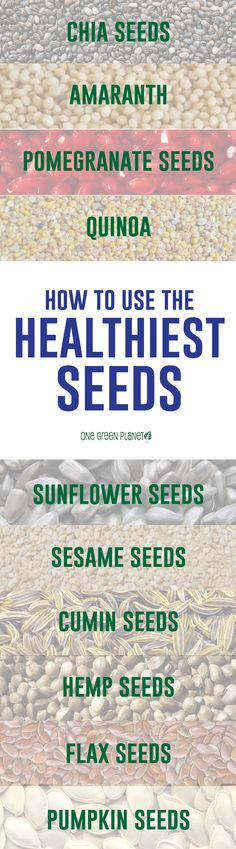 Natural plant based diet: healthiest seeds, information graphic.