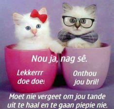 Good Night Blessings, Good Night Wishes, Good Night Sweet Dreams, Good Night Quotes, Day Wishes, Good Knight, Afrikaanse Quotes, Goeie Nag, Goeie More
