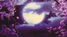 Flowers & Moonlight Animation