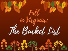 Fall in Virginia: The Bucket List   pumpkin patches, apple orchards, haunted houses, crafting, hiking, farmers markets, scenic drives, antiquing, fall candles, corn mazes, hay rides, thanksgiving & football games #byBailey