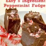 Easy 5 Ingredient Peppermint Fudge - dairy and sugar-free