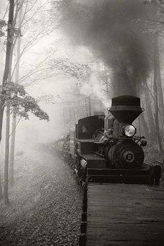 WEST VIRGINIA  LOG TRAIN