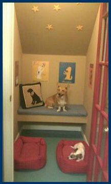 Dog room in a linen closet or under stairs Animal Room, Dog Closet, Luxury Dog Kennels, Dog Bedroom, Puppy Room, Dog Spaces, Amor Animal, Dog Hotel, Pet Pigs