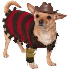 Freddy Kreuger Pet Costume