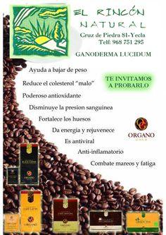 El Rincón Natural en Yecla te invita a probar Ganoderma lucidum con numerosos beneficios para tu salud, ven y pruébalo !