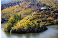 10 Top Wine Travelling Destinations | I love Travelling