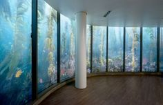 Most Innovative Decorative Glass Project, Commercial Interior   Glass Magazine