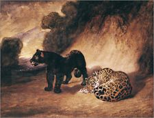 Poster / canvas two Jaguar from Peru Antoine Louis Barye
