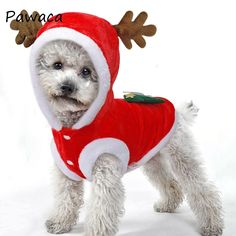 BulzEU Cute Elk Dog Christmas Clothes Pet Costume Hoodie Velvet Coat for Cats & Dogs Puppy Xmas Fancy Dress Warm Party Suit for Teddy, Yorkshire Terrier, Chihuahua, Pomeranian Festive Gifts (XS, Red) Kitten Costumes, Pet Costumes, Dog Christmas Clothes, Christmas Costumes, Chihuahua Clothes, Puppy Clothes, Christmas Animals, Christmas Dog, Christmas Jacket