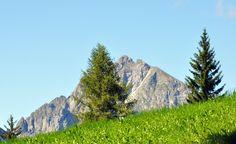 LEADNER ALM (1512m) | SNOWCAMPITALY | Viaggio alla scoperta degli angoli più caratteristici e delle tipiche malghe dell'Altopiano di Avelengo; Wurzer Alm (1707m), Vöraner Alm (1879m), Leadner Alm (1512m), Grüner Baum (1370m), Waldbichl (1501m), Knottnino(1465m), alcune delle caratteristiche mete del grandioso tour panoramico, coperto su direttrici diverse tra Avelengo e Verano. snowcamp.it