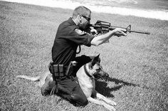 Police dog Lucas came to the rescue when officer Frazier was in danger.