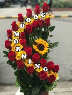 Good Morning Awesome Flower Images...