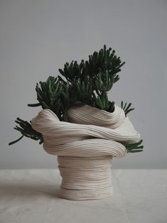 Zhu Ohmu's Coiled Ceramics. Standing vessel with twisted torso , 2016 Ceramic with Crassula Gollum Ikebana, Cerámica Ideas, Sculptures Céramiques, Ceramic Sculptures, Ceramic Sculpture Figurative, Pottery Sculpture, Coil Pots, Kintsugi, Ceramic Pottery