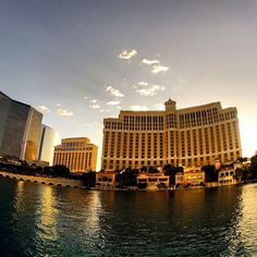 Bellagio Resort and Casino Las Vegas Hotel Deals, Las Vegas Nevada, World, Building, Travel, Book, Viajes, Buildings, Destinations