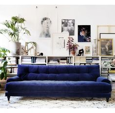 Blue velvet sofa and gallery wall