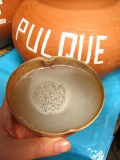 Pulque is a traditional beverage % alcohol) made from the juice of the maguey or agave plant. Authentic Mexican Recipes, Mexican Food Recipes, Real Food Recipes, Delicious Recipes, Mexican Kitchens, Mexican Dishes, Tequila, Agave Plant, Root Beer