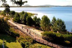 URUGUAY | Desde estas matinales vistas hacia Laguna del Sauce.  Lindo para actividades al aire libre.