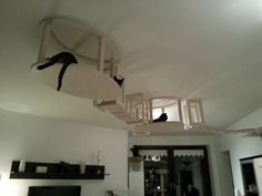 German Designers Transform Homes Into Elaborate Cat Playgrounds - Jenny Xie - The Atlantic Cities