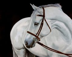 """Jan Lukens, 'Look Back', Oil on canvas, 48x60"""", 2013. Private collection, Charlotte, NC, USA"""