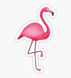Stickers featuring millions of original designs created by independent artists. Bubble Stickers, Diy Stickers, Printable Stickers, Laptop Stickers, Flamingo Birthday, Journal Stickers, Aesthetic Stickers, Logo Sticker, Tumblr Stickers