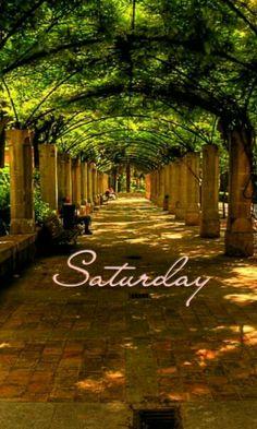 Good morning my beautiful girls. Saturday Morning Quotes, Saturday Images, Saturday Night Fever, Good Morning Quotes, Saturday Greetings, Happy Saturday, Happy Weekend, Happy Friday, Sunday