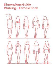 Walking Females – Back - Architectur Human Figure Sketches, Human Figure Drawing, Body Sketches, Figure Sketching, Urban Sketching, Art Sketches, Drawing Reference Poses, Drawing Poses, Anatomy Reference