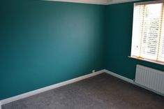 Guest Bedroom and Office - Dulux Proud Peacock