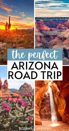 Want to plan an Arizona road trip itinerary? Here's all you need to know! Arizona road trip map | Northern Arizona road trip | places to visit on an Arizona road trip | Grand Canyon road trip | Southwest road trip | best stops on an Arizona road trip | Arizona road trip bucket lists | Arizona trip itinerary | Tucson road trip | road trip to Page Arizona | Phoenix to Sedona road trip | Phoenix to Grand Canyon road trip | Tucson to Grand Canyon | 7 days in Arizona | one week in Arizona…