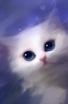 Demos by Rihards Donskis #white #cat