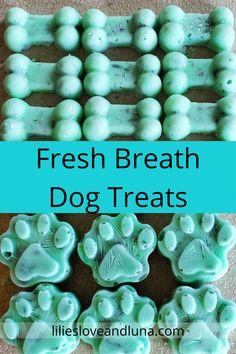Easy to make 3 ingredient fresh breath frozen dog treats. Bad Dog Breath, Frozen Dog Treats, Dog Things, Homemade Dog Treats, Dog Treat Recipes, Diy Dog, Dog Stuff, Jasper, Breathe