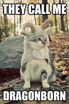 Adorable Dovah-kitty :D
