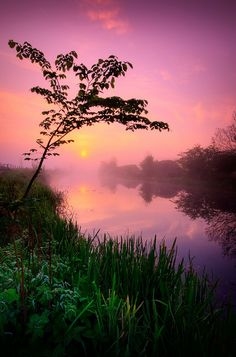 Forth and Clyde Canal at Twechar