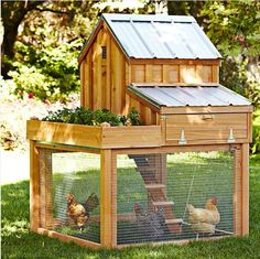 Chicken coop ideas. - just add a raised bed near - or on top of the coop