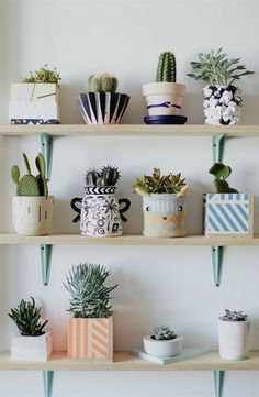 10 Intuitive Tips: Natural Home Decor Rustic Decoration natural home decor ideas apartment therapy.Natural Home Decor Bedroom Interiors simple natural home decor ceilings.Natural Home Decor Modern Dream Houses. Plant Wall, Plant Decor, Hanging Plant, Deco Cactus, Cactus Decor, Deco Nature, Decoration Plante, Home Decoration, Wall Decorations