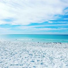 Double tap if you love white powder sand  Click bio link to access private rates. http://ift.tt/2jrLRuz . & Tap that follow button :)  . . @Floridadotcom @Floridadotcom @Floridadotcom . . .  Yo @30aeats