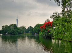 """Guangzhou is on the top of Urban Green Area in China for years. And the """"Flower City"""", Guangzhou is one of the best green cities in China."""