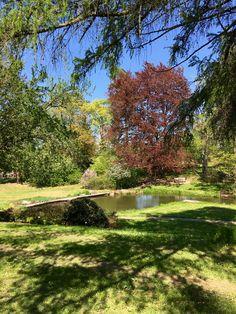FullSizeRender Paradise, Sidewalk, River, Nature, Outdoor, Outdoors, Naturaleza, Side Walkway, Walkway