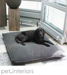 Best dog bed for Labrador, exclusive latex filling, orthopedic