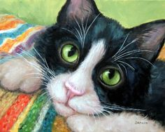 Tuxedo Cat Art Print from Original Painting by Dottie Dracos, Tuxedo Kitty with blanket, Black and White Cat