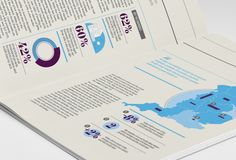 Infographic Report: Countrywide on Behance